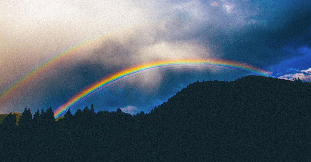 Jejum Dia 9: Uma criação totalmente única