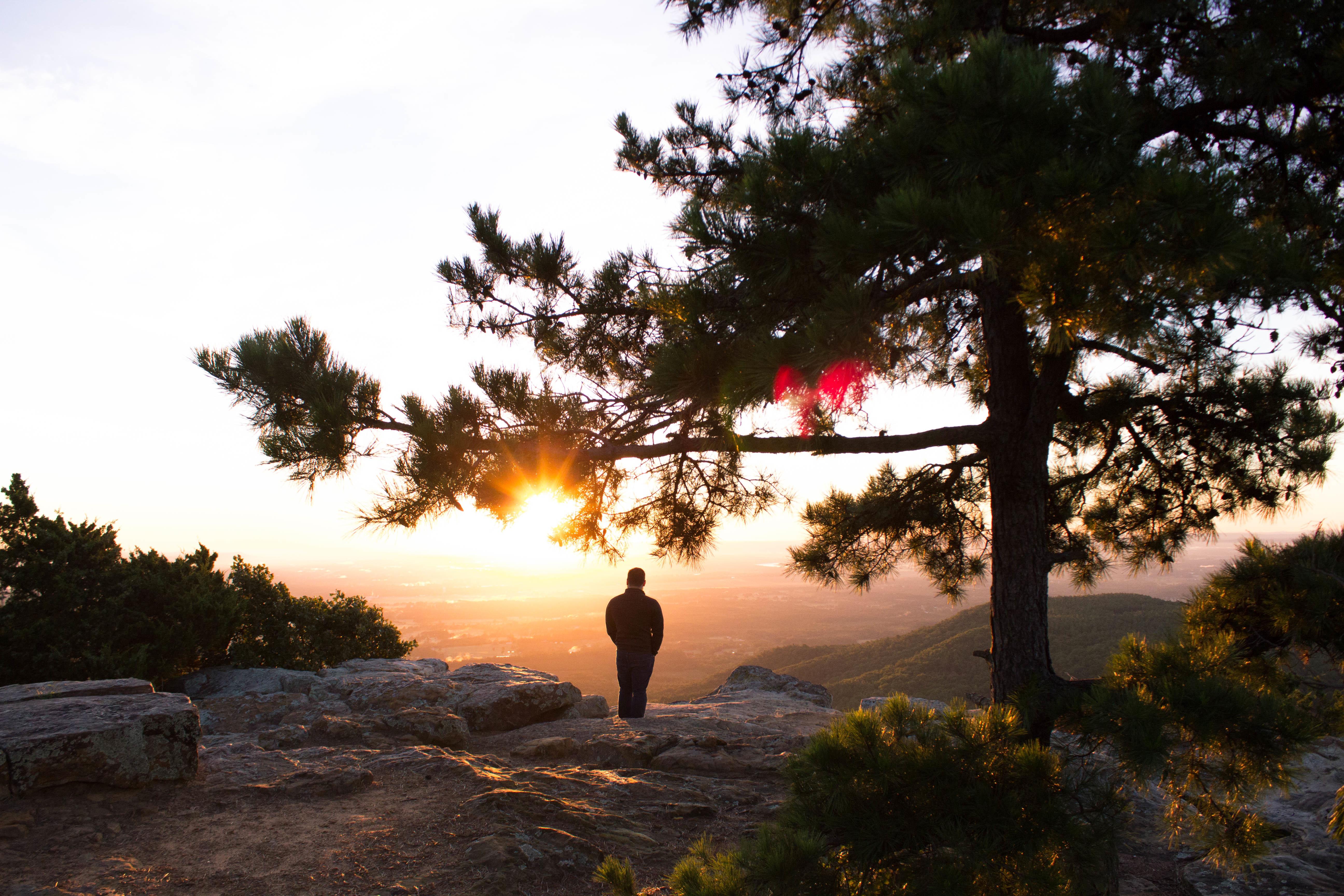homem em paisagem observa atos da criação