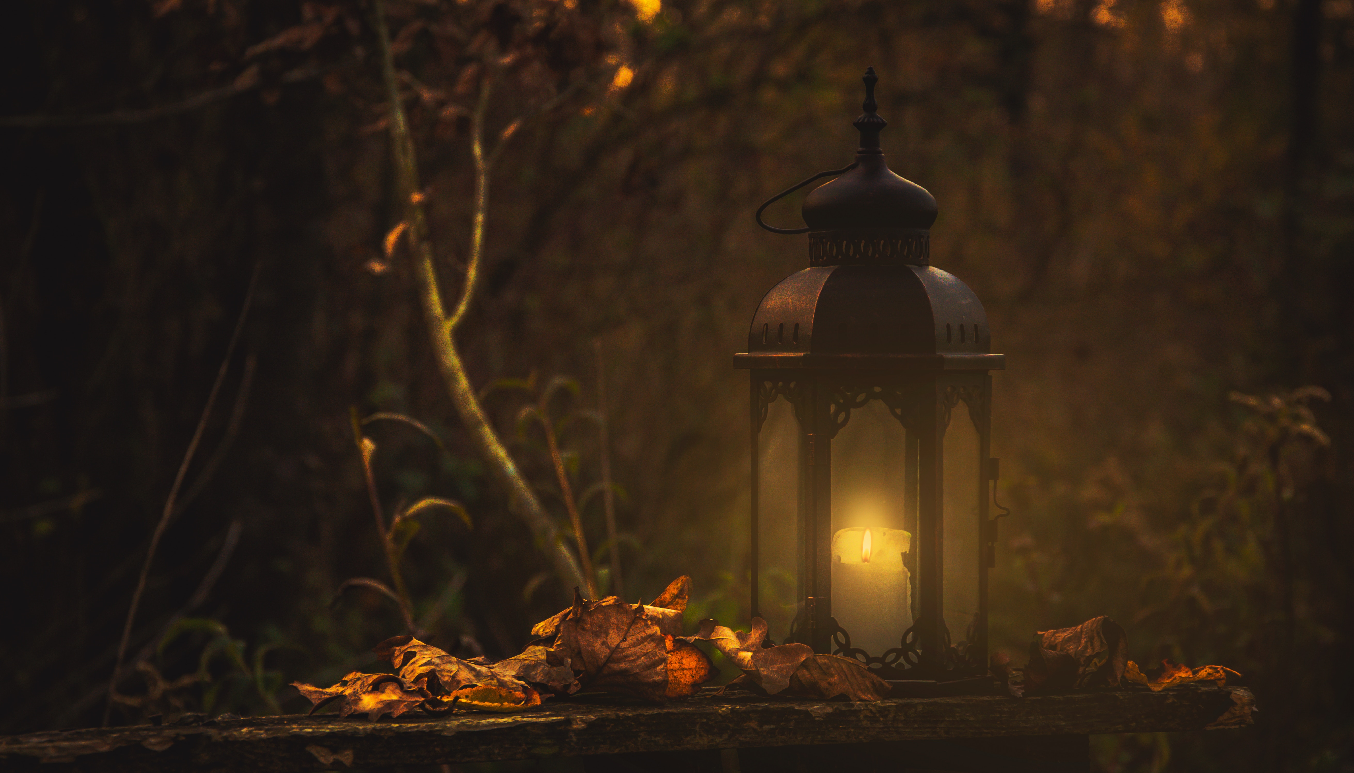 cadeia ilumina caminhos inesperados
