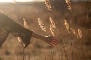 Esse é o momento de aquietar o coração e desfrutar da vida.