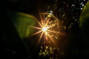 Porque devemos brilhar a luz de Cristo
