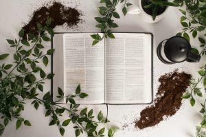 Perseverando na leitura bíblica