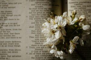 Flores no Livro de Salmos