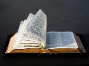 A palavra de Cristo